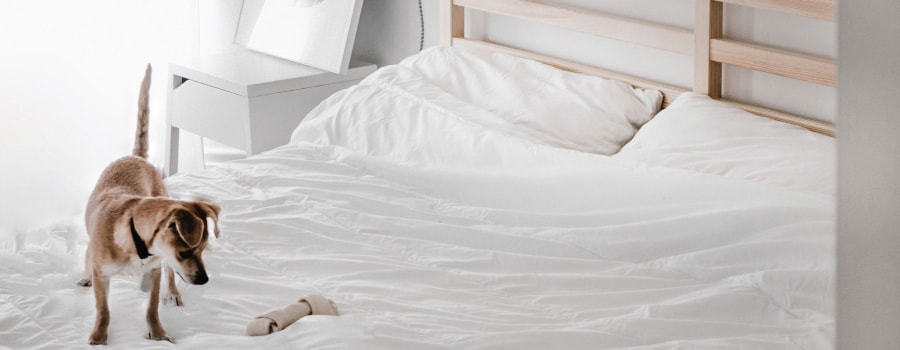 Best Mattresses for 2018