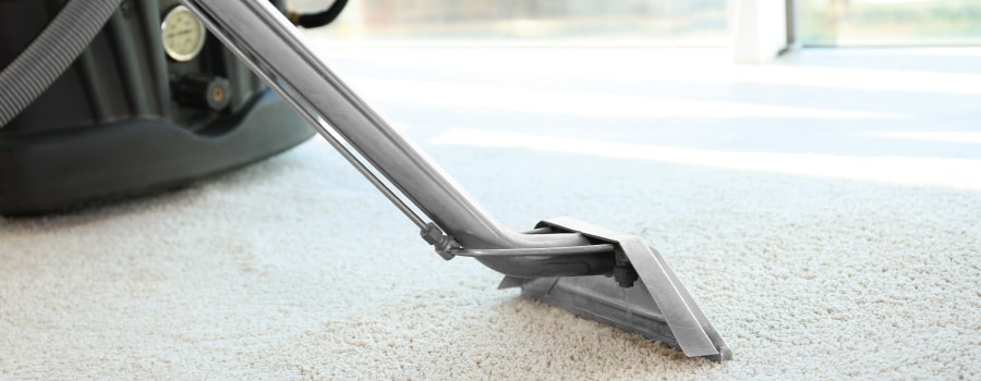 Best Carpet Cleaners 2018 Reviews And Buyer S Guide